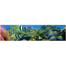 Экран под ванну 3D 1.5 м Коралловый риф