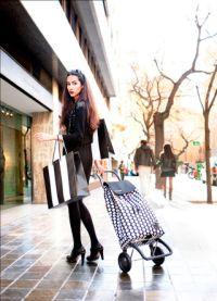 Походы по магазинам с хозяйственной сумкой-тележкой